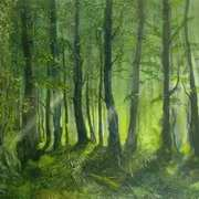 Shrule Wood