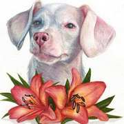 Pink Piglet the Puppy with Lilies