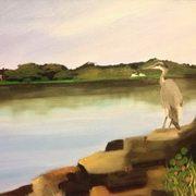 Heron Malahide Estuary