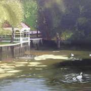 Pond at Stephens green